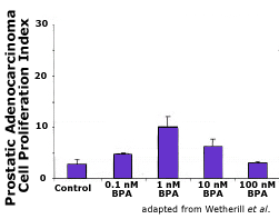 BPA affects prostate tumor proliferation nonmonotonically